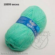 каролина семеновская  10899 весна