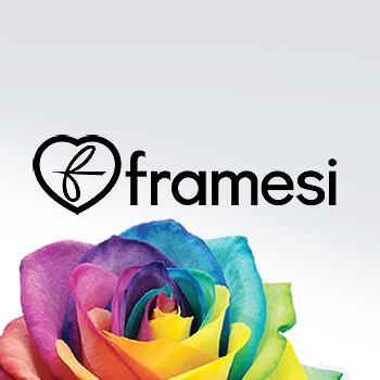 Купить Framesi Morphosis с доставкой по России