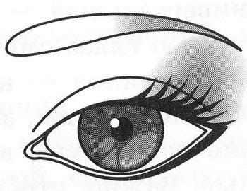 Близко поставленные глаза