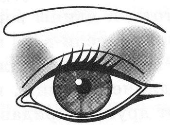 Щелевидные глаза