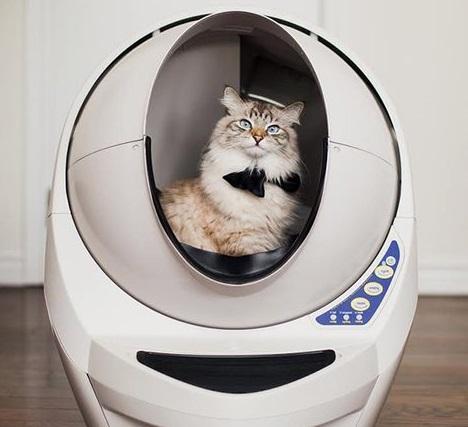 кот в роботе