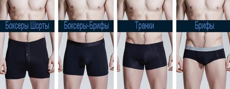 типы мужских трусов боксеры брифы транки хипсы
