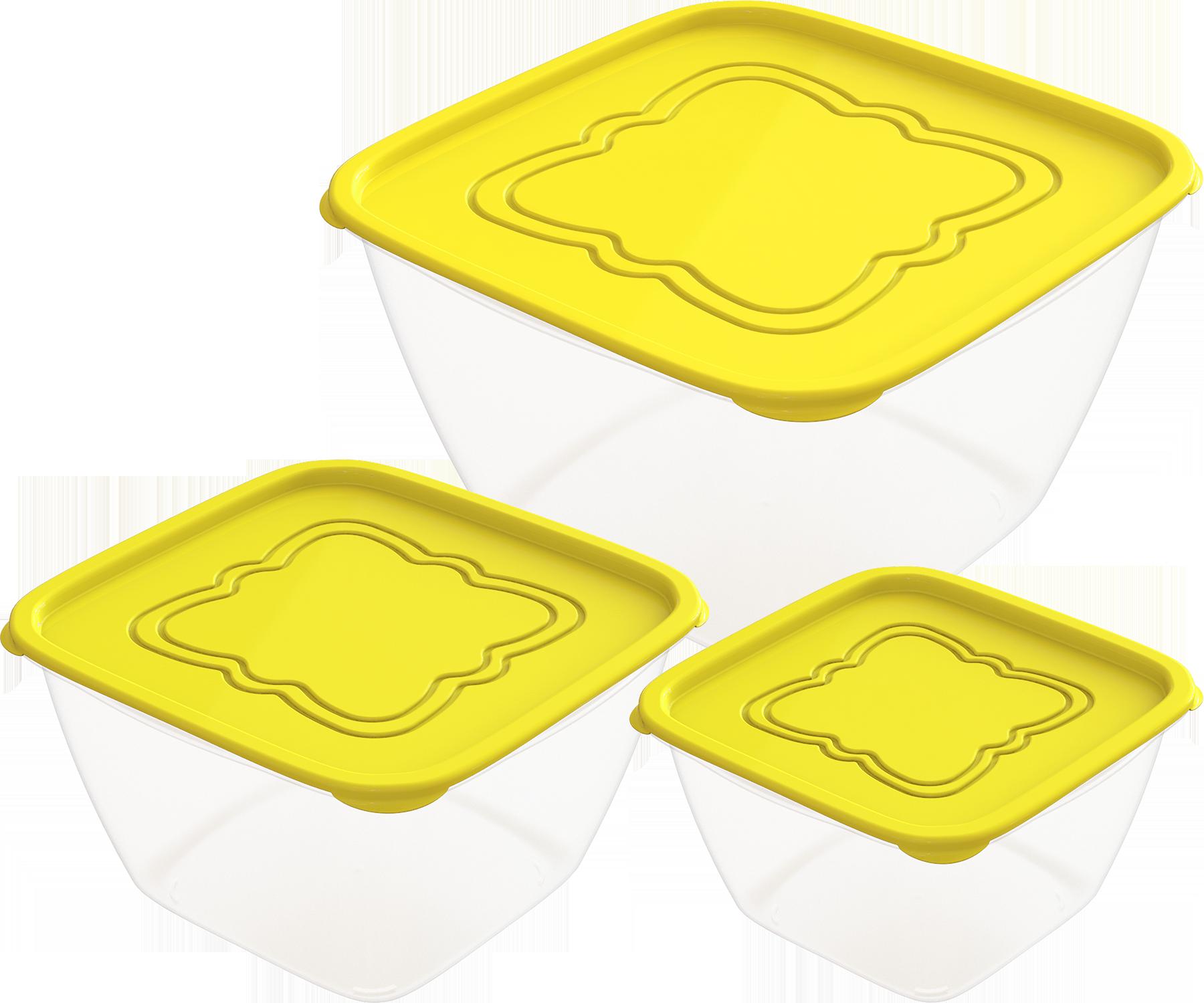 АП 160 Набор контейнеров для продуктов «Пикник» №1 (СВЧ) 0,5л; 1,0л; 2,0л (3шт)