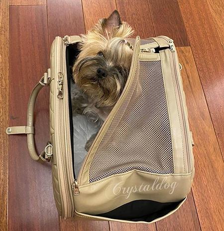 сумка для собаки в самолет