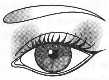 Широко поставленные глаза