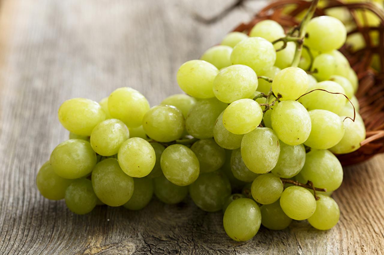 Grapes_Closeup_497627.jpg