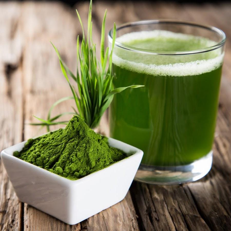 Сине-зеленые водоросли - Спирулина