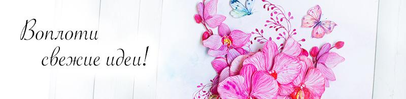 На фото сюжет — Розовые орхидеи