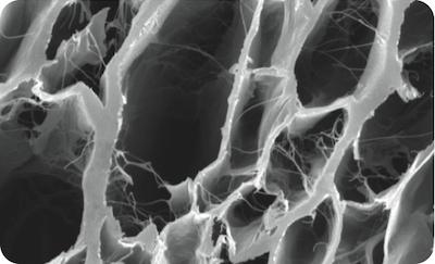 Коллагеновая мембрана Alpha - Bio. Костный материал. Купить Украина, Киев