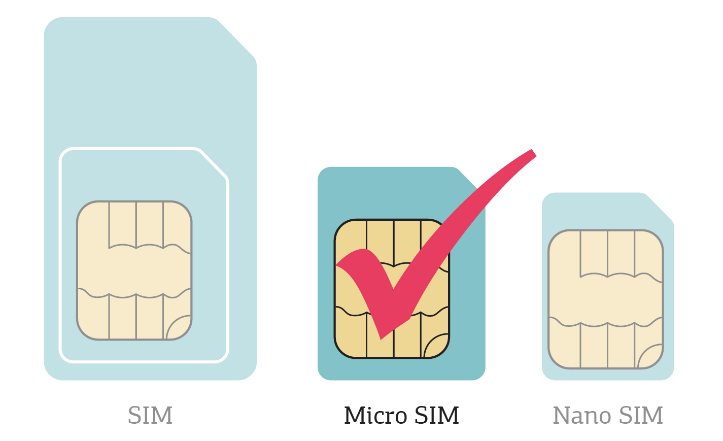 SIM_micro.jpg