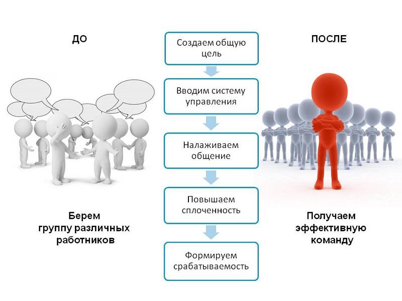 этапы сплочения коллектива