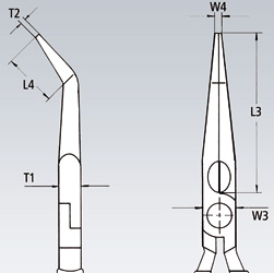 31T1.jpg