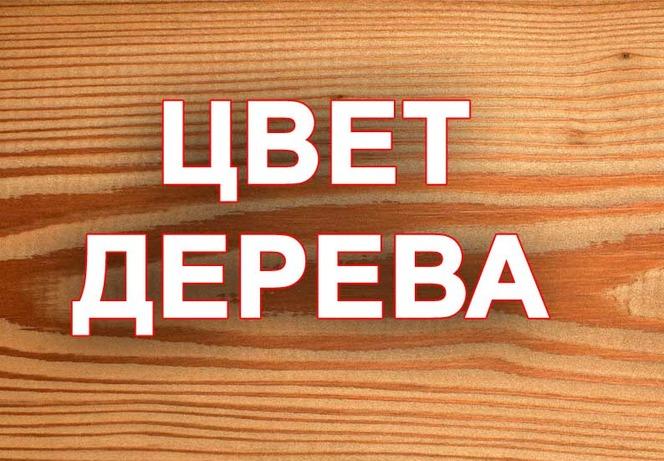 цвет_дерева.jpg
