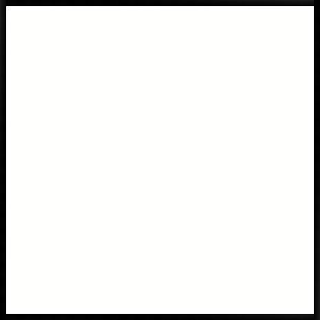 white465.jpg