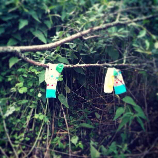 Носки Happy Socks на дереве instagram artofsocks