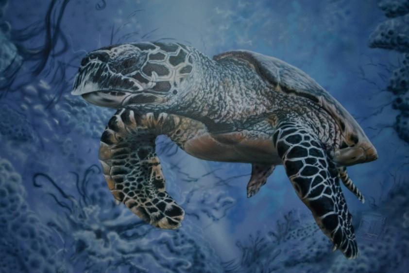 черепаха в стиле аэрографии на стене