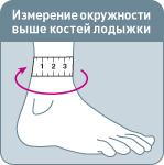 size_lodyzhka_1_.jpg