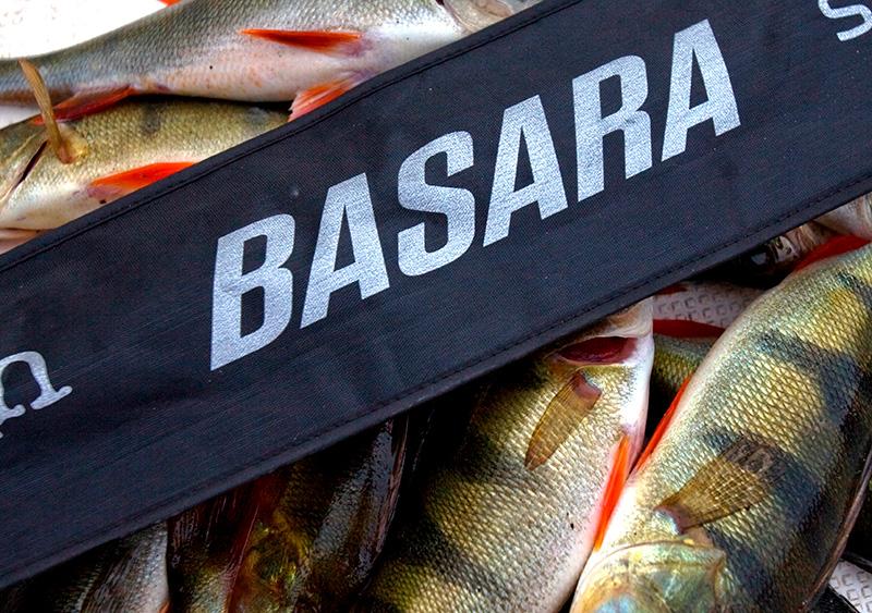 Basara – цена успеха
