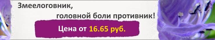 Купить семена Змееголовника, цена низкая, доставка почтой наложенным платежом по России, курьером по Москве - интернет-магазин АгроБум