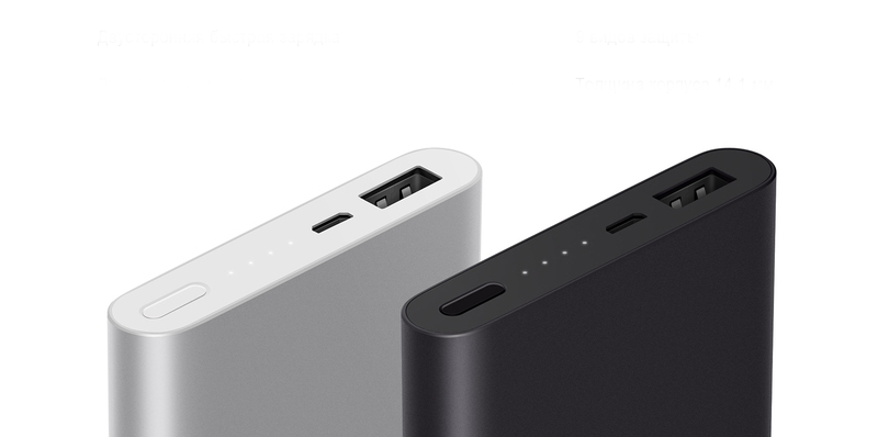 Xiaomi Mi Power Bank 2 10000 (серебристый)