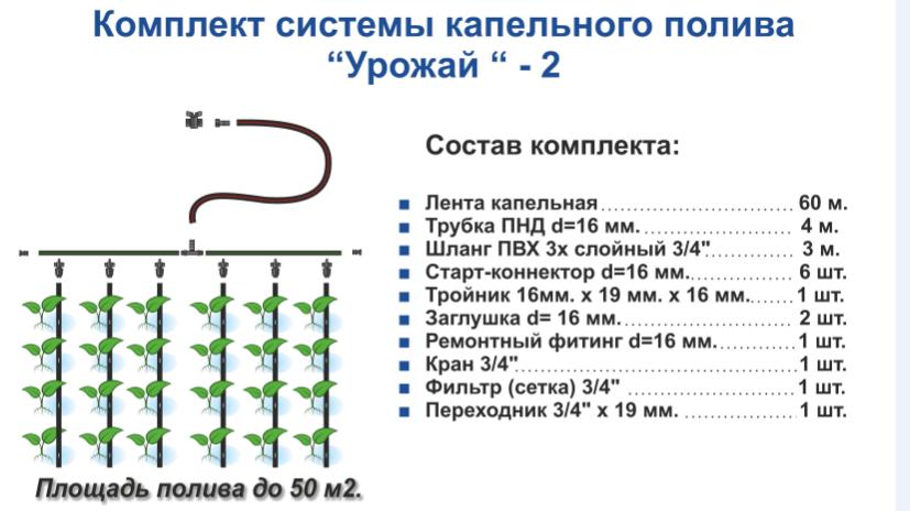 Примерная схема капельного полива