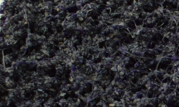 Extra Coаrse экстра грубое зерно черный или фиолетовый цвет зернистость по FEPA P40
