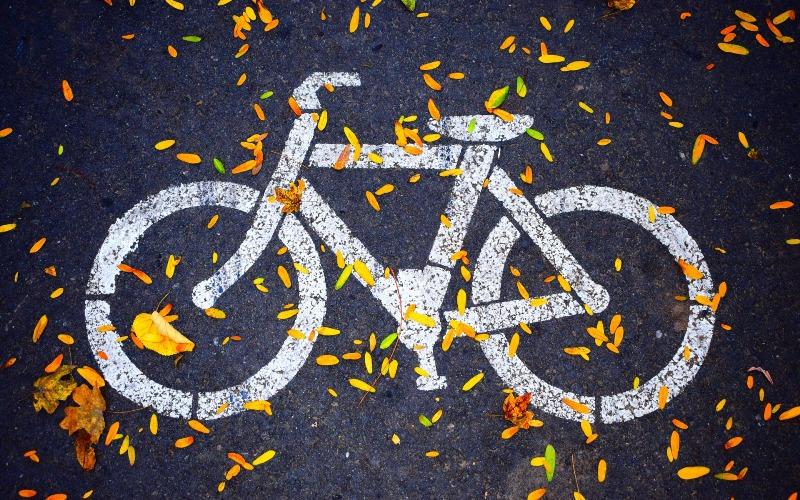 Разметка велодорожки