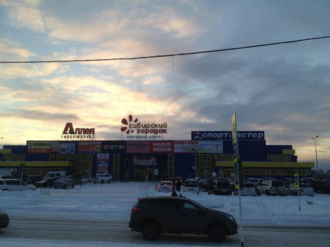 Зеленогорск Сибирский городок 100 Друзей