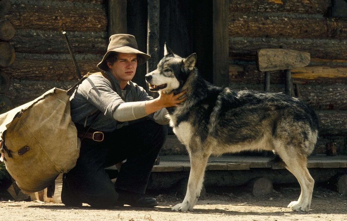 wolfsblat_zoo-family.ru.jpg