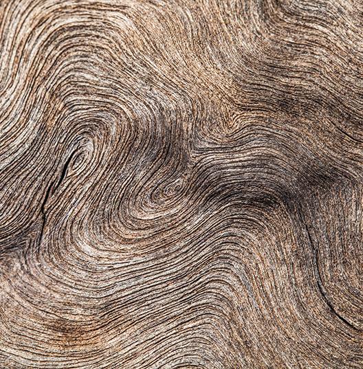 Ноты сердца: Кашемировая древесина/Кипарис