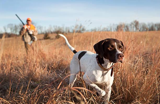 2 охотника