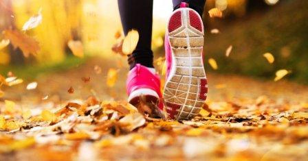 кроссовки и кеды для осени в 2018 году