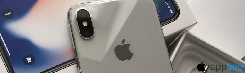 Айфон 10 Серебристый цена