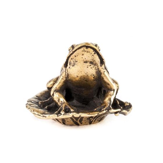 Лягушка на листе, фотография в профиль