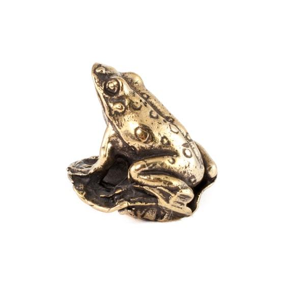 Изображение лягушки, фотография сбоку