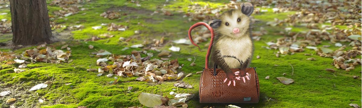 светлая сумка для светлых дней