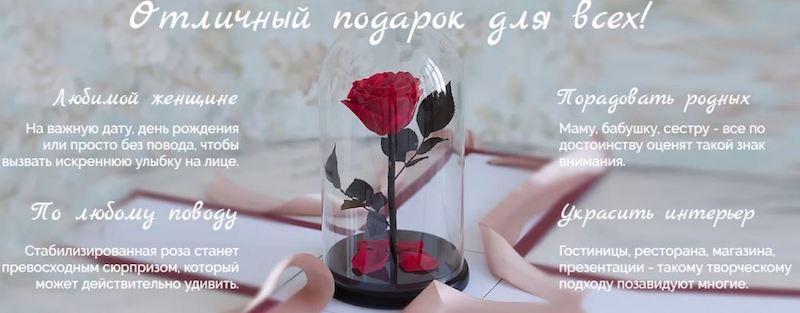 Роза в колбе в подарочной упаковке
