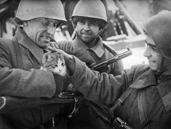 Великая Отечественная Война. Как это было...