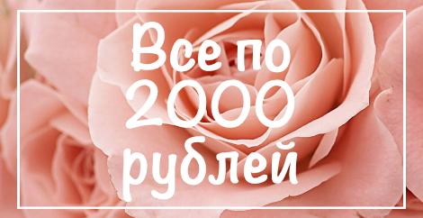 до 2000