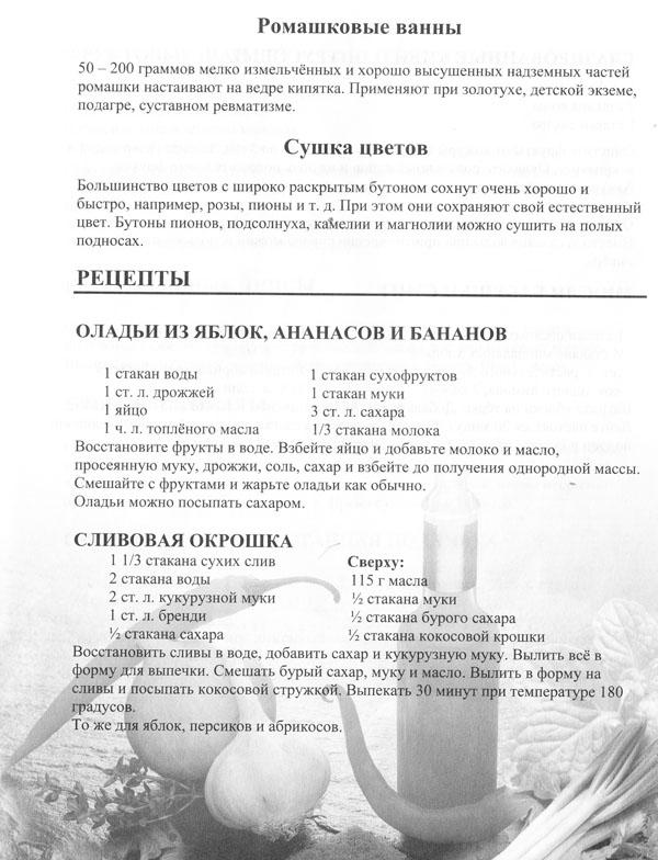 receptu9-2.jpg