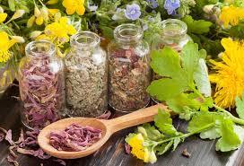 Витамины для желудка и кишечника: показания к применению