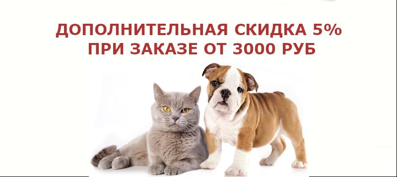 Скидка 5% за заказ от 3000 руб