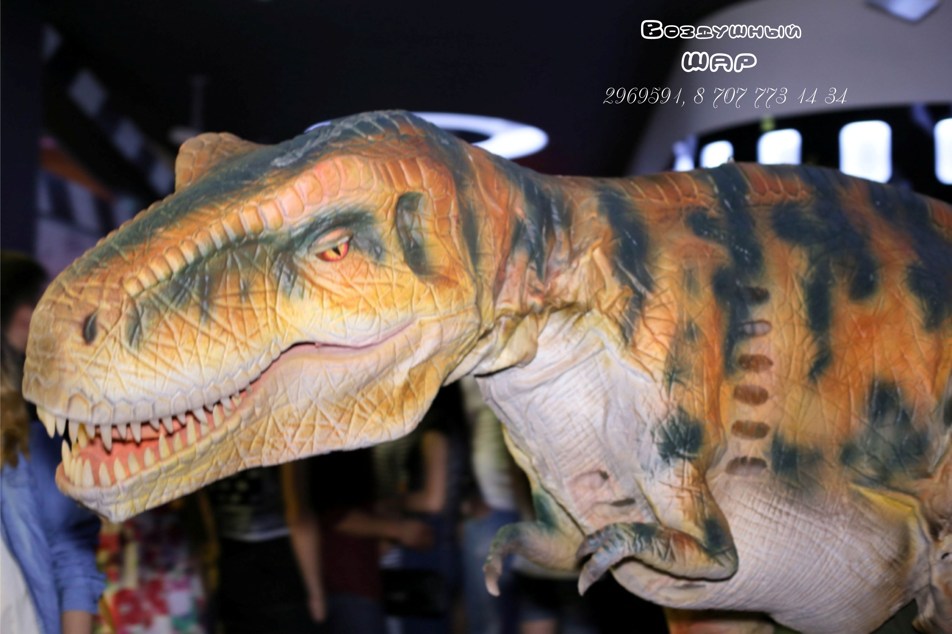 тирекс_вечеринка_динозавр_Алматы_4.jpg
