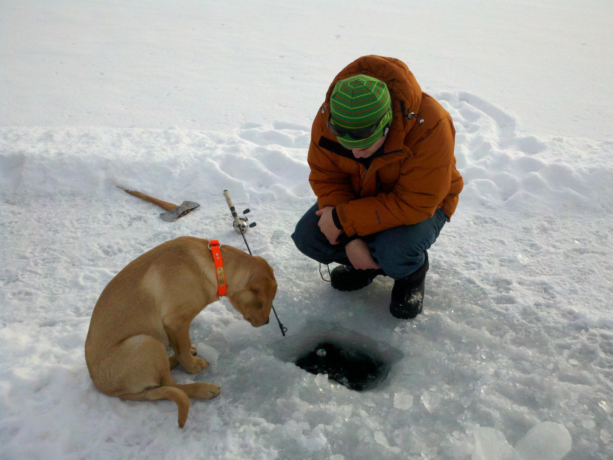 Прикольные картинки зимней рыбалки, открытки