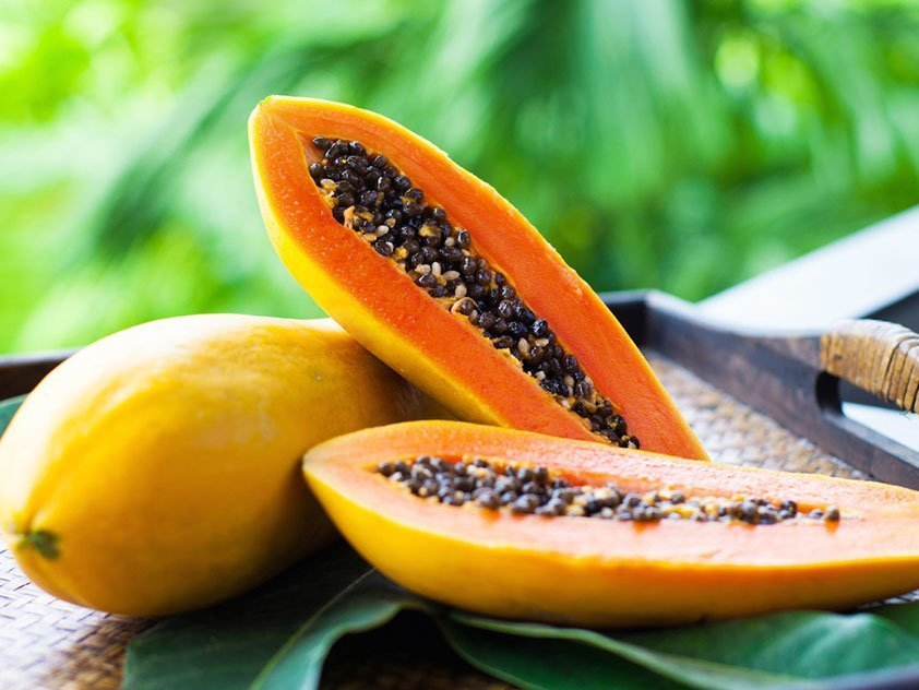 carica-papaya.jpg