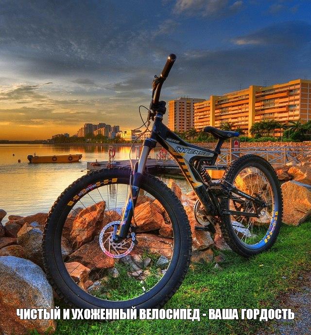 Как обслужить велосипед эффективно