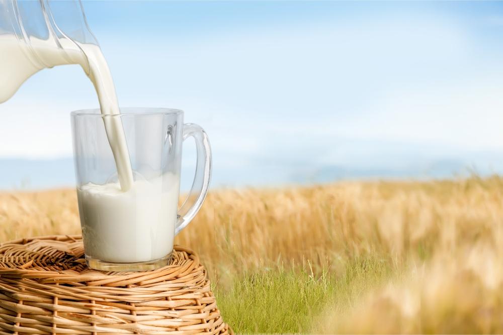 Купить сепаратор для молока Березка в интернет магазине в Домодедово, Москве, Обнинске, Калуге