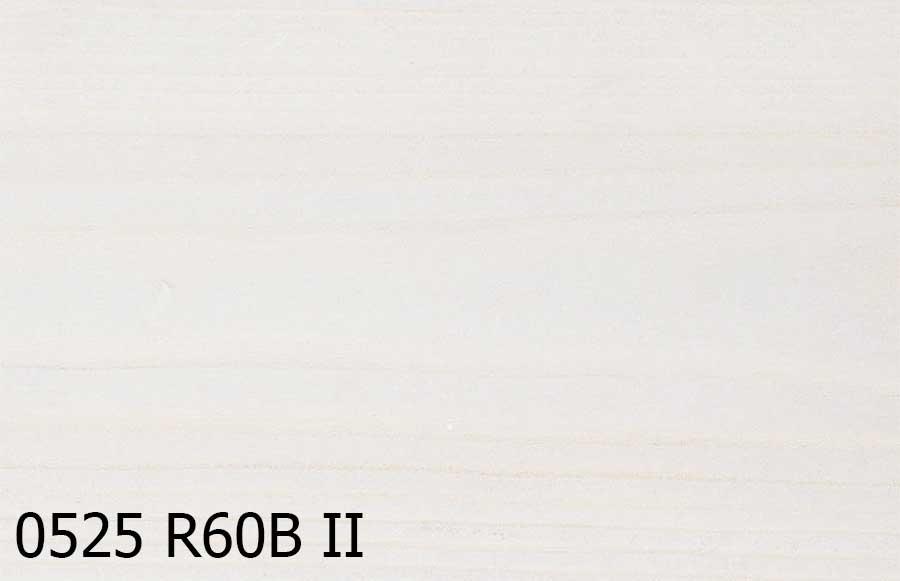 0525-R60B-II.jpg