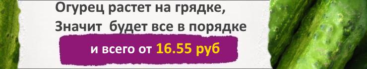 Купить семена Огурцов, цена низкая, доставка почтой наложенным платежом по России, курьером по Москве - интернет-магазин АгроБум