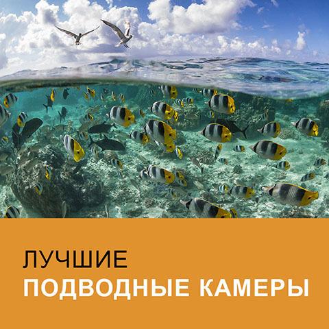 Ссылка на лучшие подводные камеры